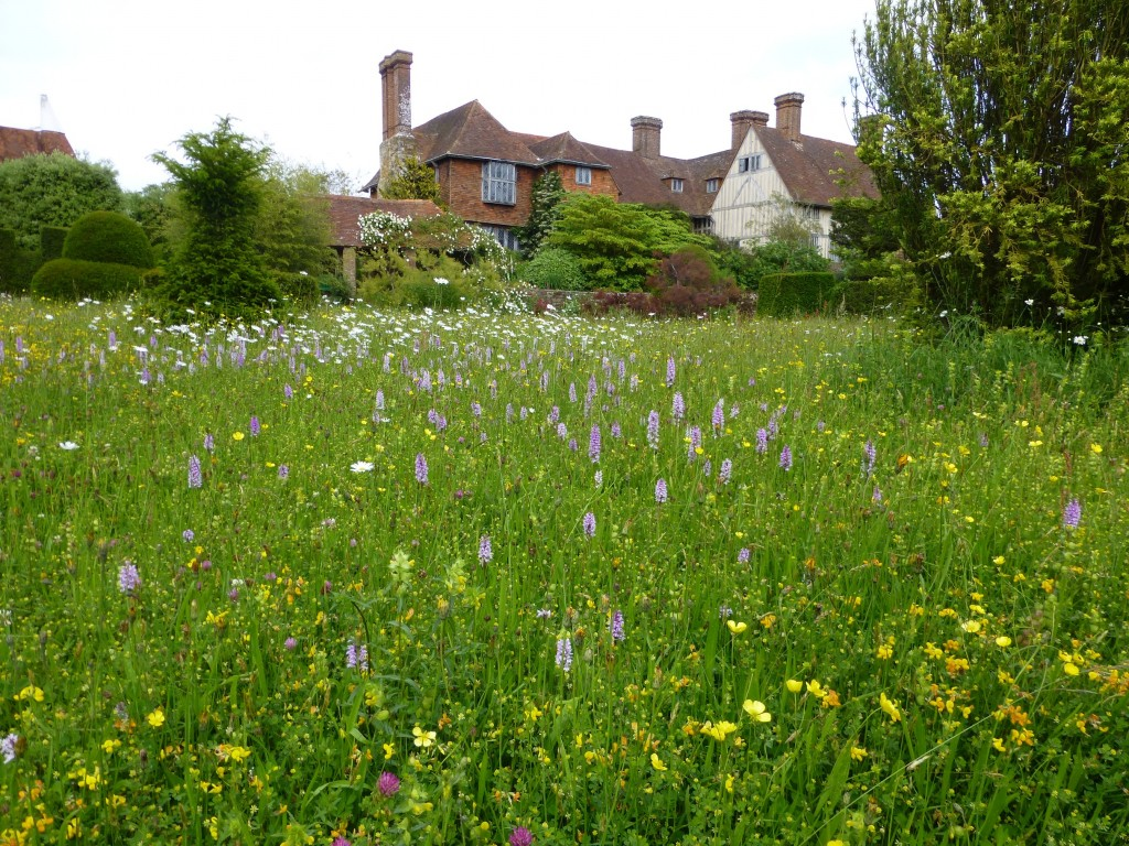 Great Dixter And Yellow Rattle Wild Flower Lawns And Meadows