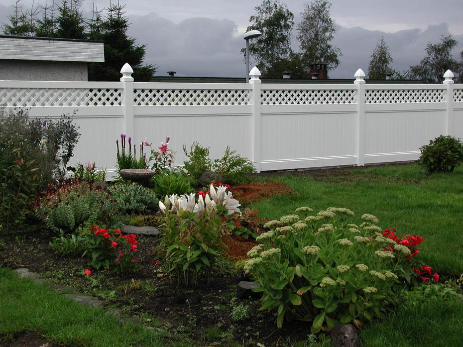 Lattice topped panel fence as a garden border