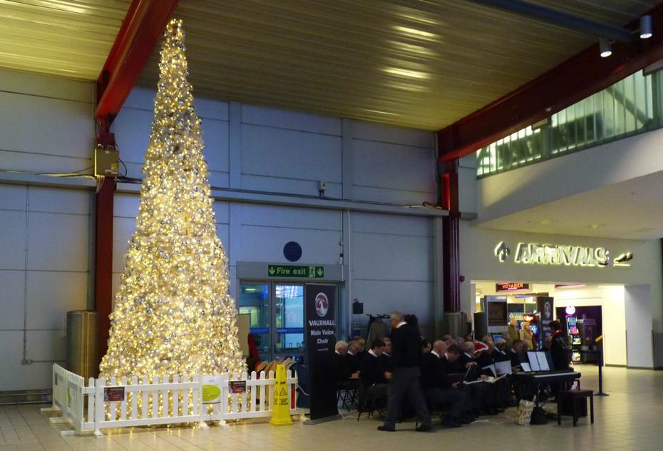 Temporary picket fencing protecting a Christmas tree in a public place